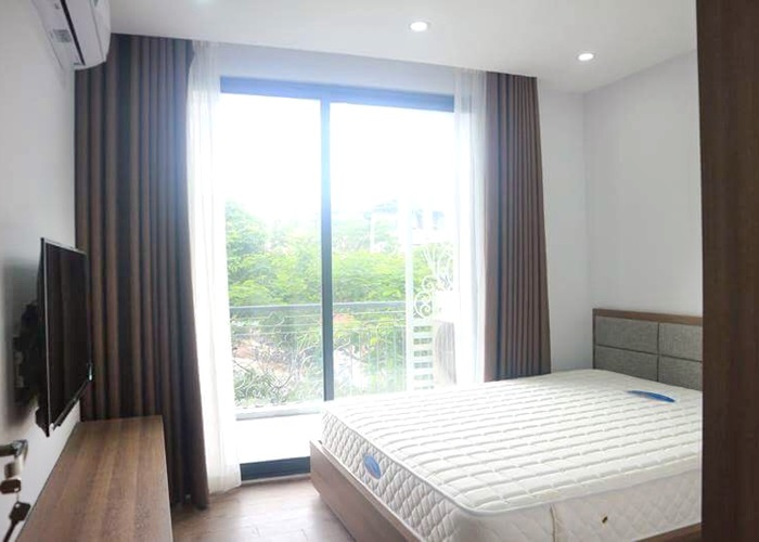2 bedroom furnished apartment in Trinh Cong Son