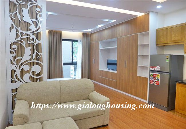 Nice studio apartment in Ba Dinh for rent 1