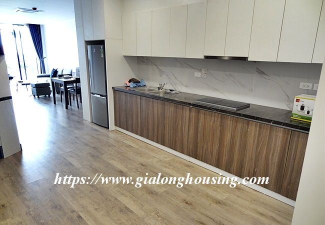 Xuan Dieu brand new apartment for rent 9
