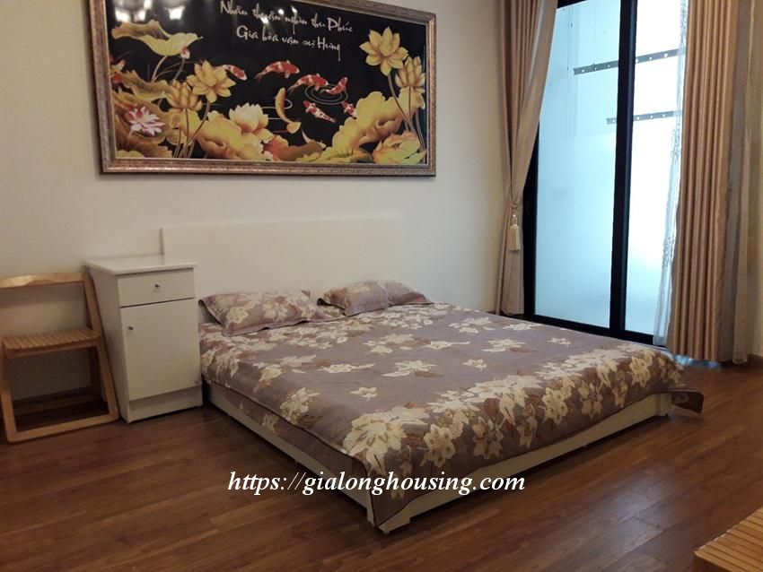 Beautiful fully furnished apartment in Times City 7