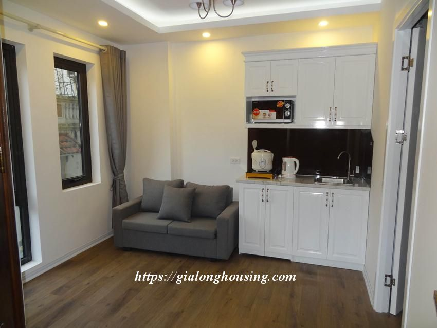 Cozy apartment in Doi Can for rent from today 2
