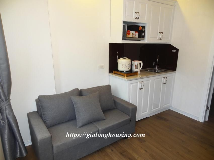 Cozy apartment in Doi Can for rent from today 5