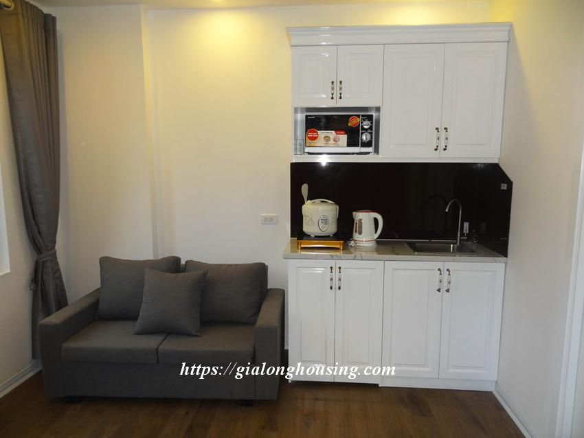 Cozy apartment in Doi Can for rent from today 9