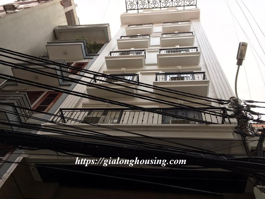 Brand new 2 bedroom serviced apartment in Ho Tung Mau for rent 1