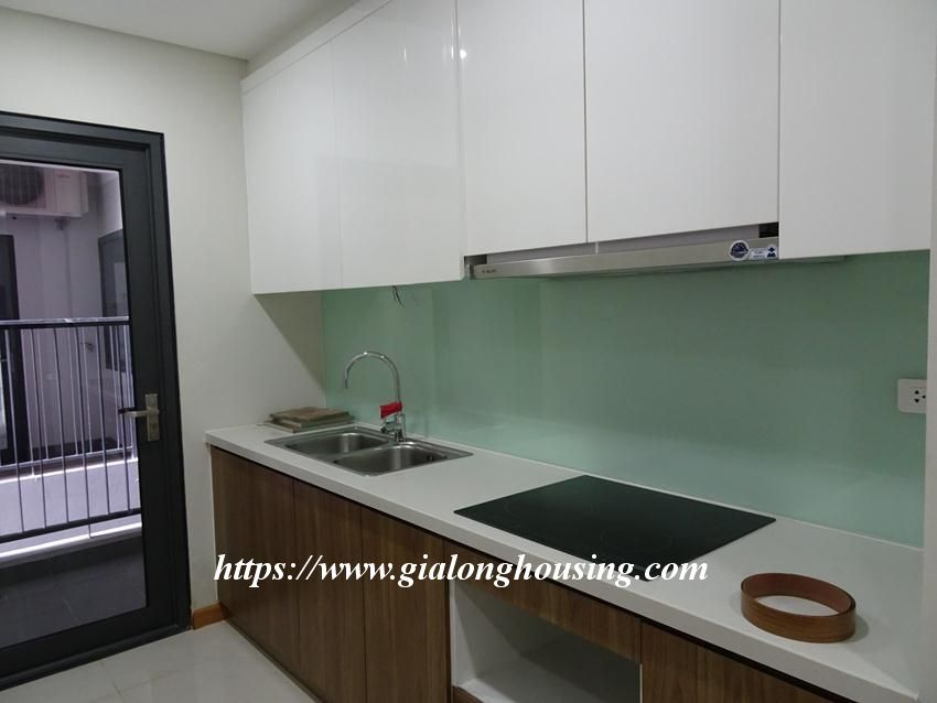 Brand new 2 bedroom apartment in Discovery Complex Cau Giay 4