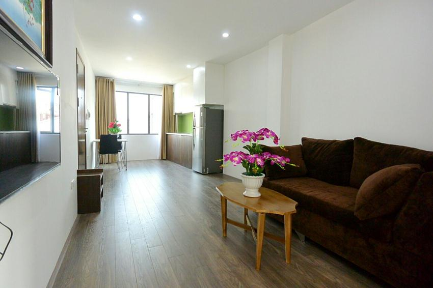 Brand new one bedroom apartment in 31 Xuan Dieu