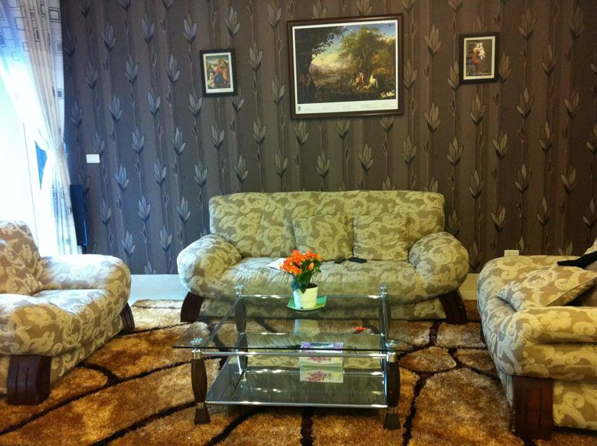 Fully furnished villa in C block for rent