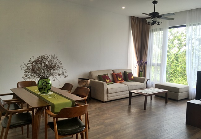New fully furnished apartment in Xom Chua for rent