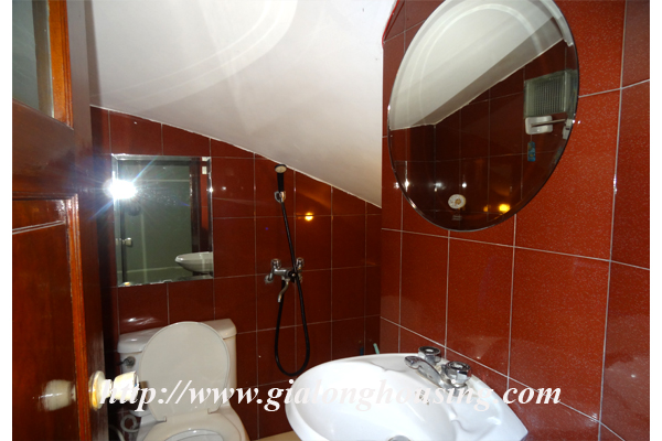 Park view house for rent in Hai Ba Trung district 5